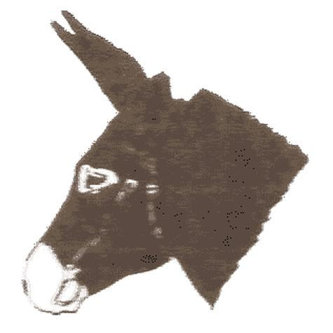 Donkey and Mule Society of South Australia Inc