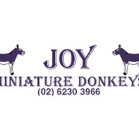 Joy Miniature Donkeys (NSW) Joan Young